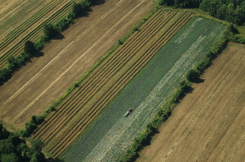 Aerial-fields001W.jpg