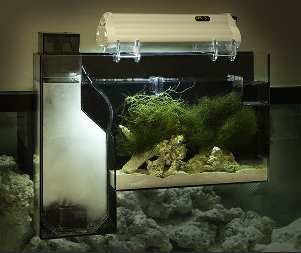 AeroFuge with PC Light .  New LED Lights are available.