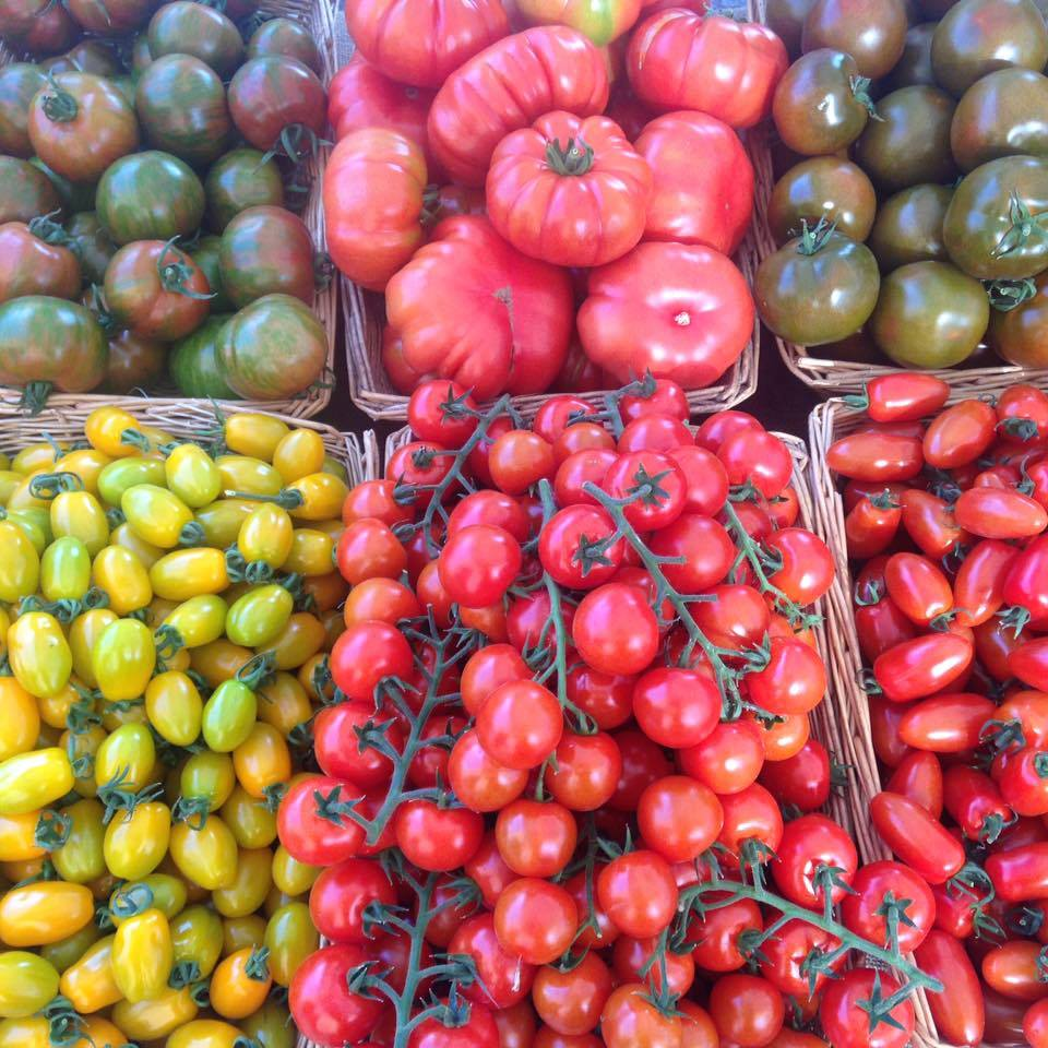 Tomatoes from Ealing Farmers Market