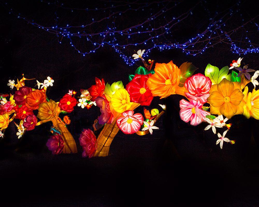 magical-Lantern-Festival-144-1000x800.jpg