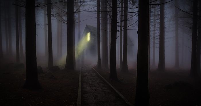 Halloween web.jpg