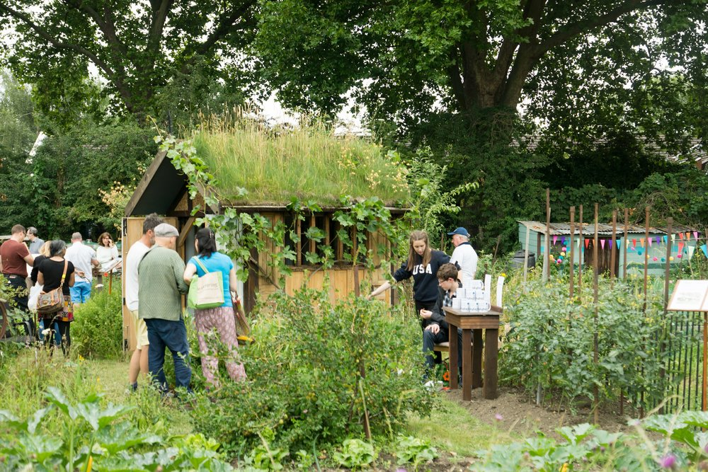 Northfields Allotments Summer Open Day 2017_Wildlife-friendly Shed.jpg