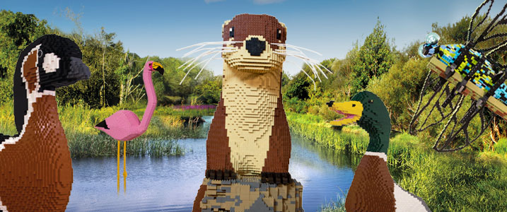 Image source -  wwt.org.uk/wetland-centres/london/whats-on/2018/10/06/giant-lego-brick-animal-trail/