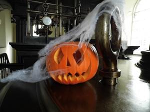 _Media_Default_ImageGallerie__Halloween1.jpeg