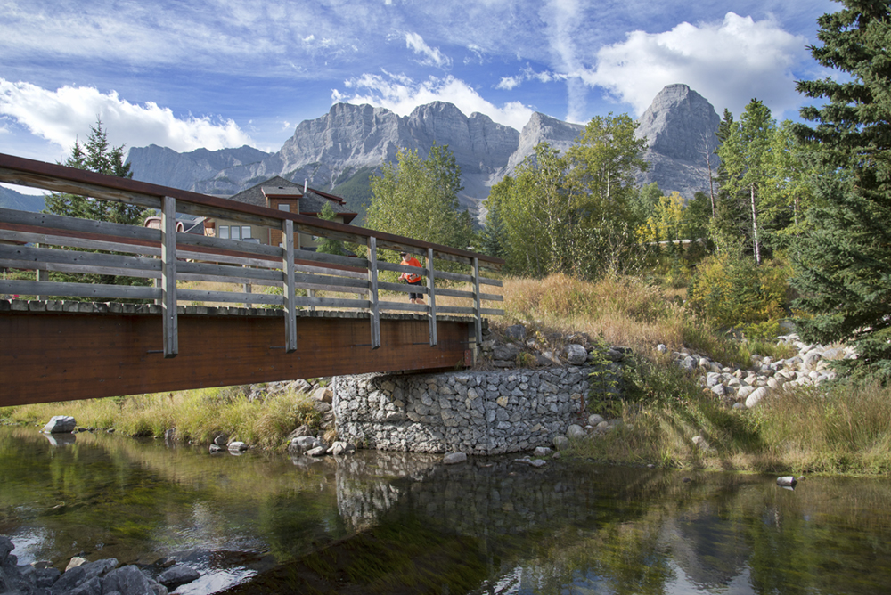 25 Creek bridge runner_pamdoyle w.jpg
