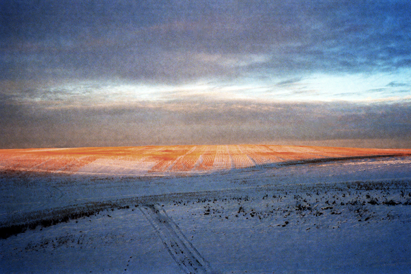 Badlands, Alberta (2015)