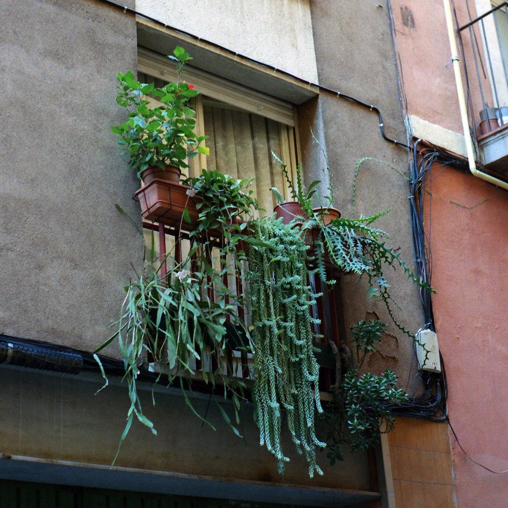 Gràcia, Barcelona (2016)