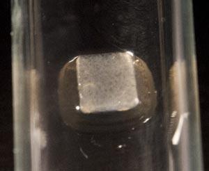 Fig-1B-(after).jpg