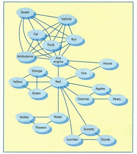 Associational Network