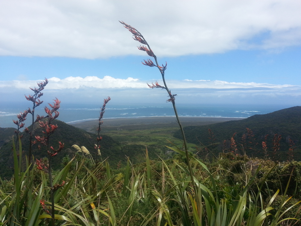 Whatipu Valley to Ocean