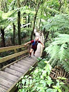 Waterworks Summit stairway, Hakamirata Walkway, Waikato, N.Z.