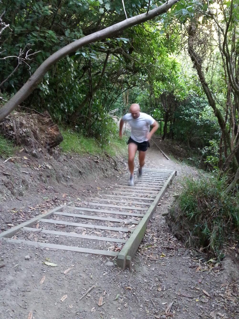 Ascending Mt Victoria