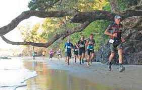 Running under Pohutukawa trees