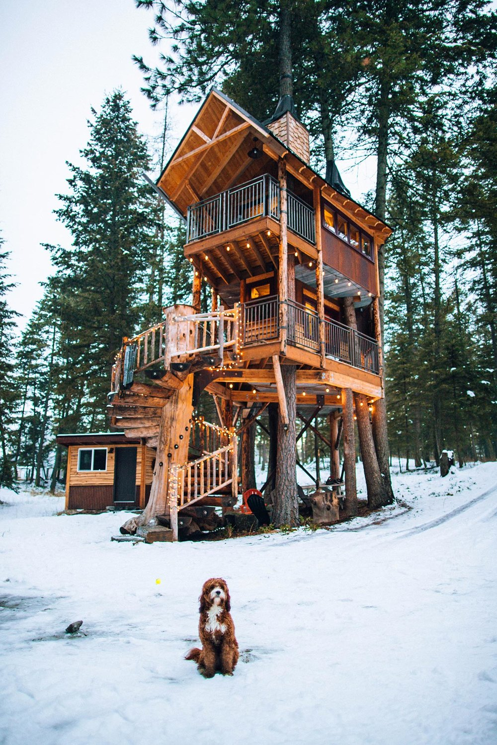 roomporn-mt-treehouse-retreat-8.jpg