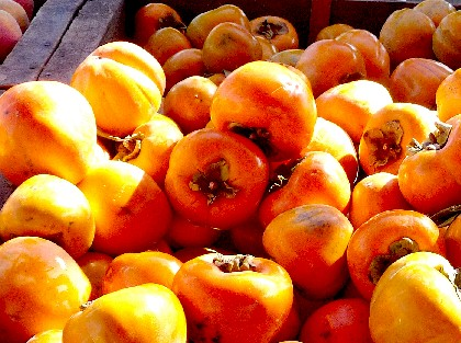 farmers mrk.persimmons