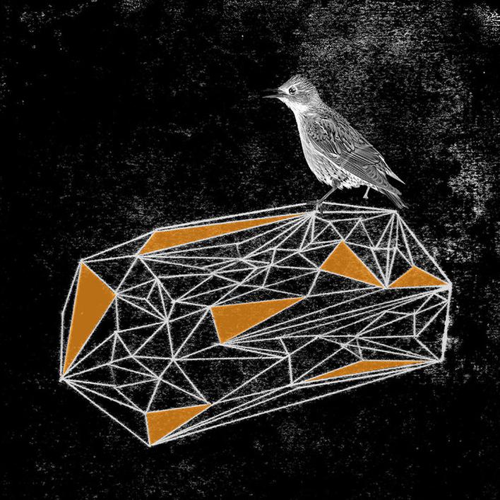 gregmcindoe-birdie-1.jpg