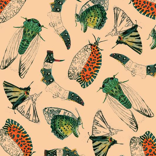 invertebrates+pattern.jpg