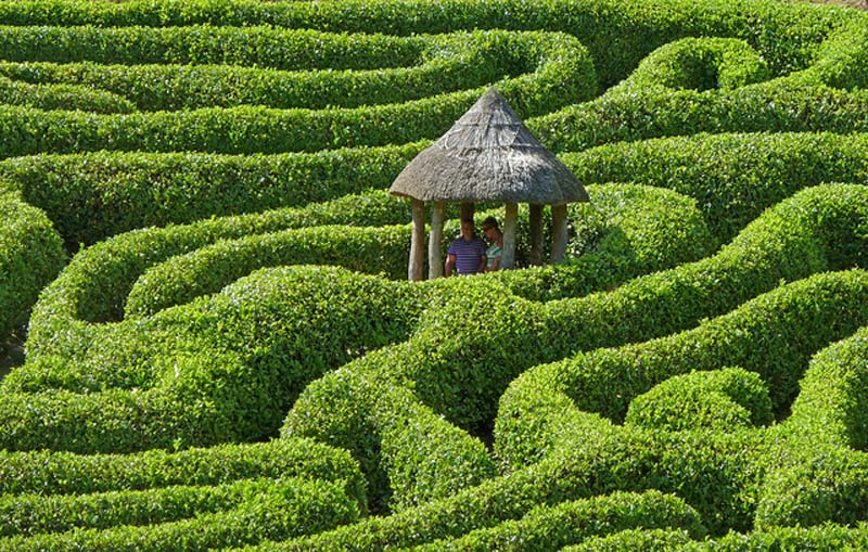 First Home Buyer Home Loan Maze