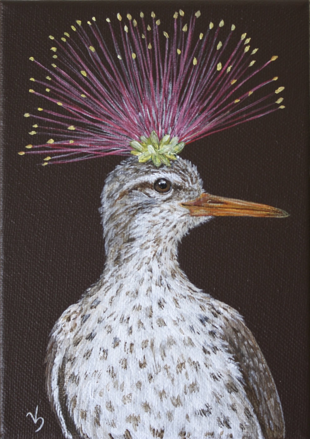 Hannah, spotted sandpiper with mimosa.jpg