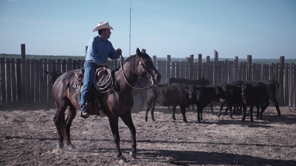 Ranching2.jpg