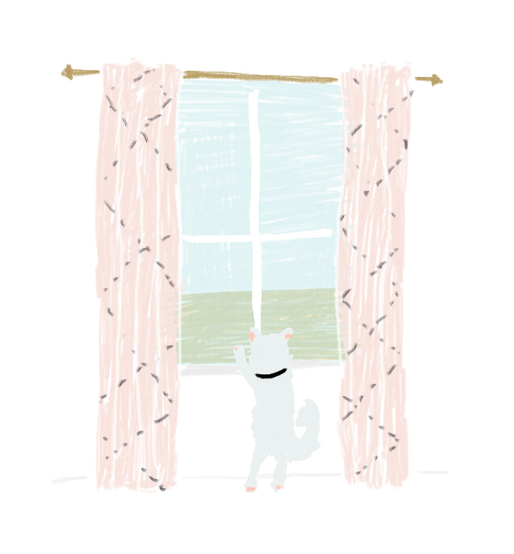 Blog_Wednesday_10LittleThings_curtains.jpg