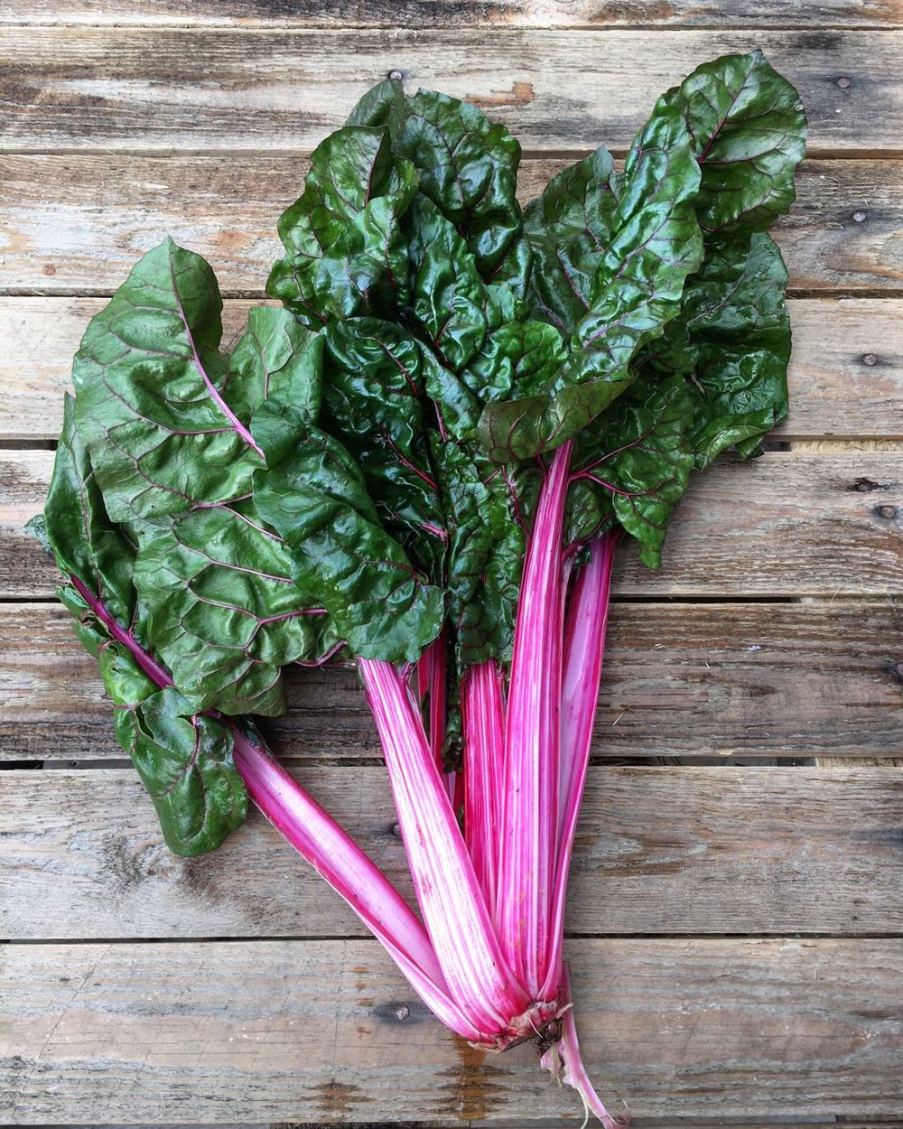 Rainbow Chard    Photo ©Evie Saffron Strands    Chard    Chard  comes in several guises.  The mighty ivory-stemmed, deep-green leaved Swiss Chard needs to have its leaves and stems cooked separately to cope with the very different textures of each.  The altogether finer golden-stemmed or ruby-red forms and multi-coloured Rainbow Chards whose stalks can grow cream, yellow, orange, pink or crimson can, unless very large, be cooked together.  But if you prefer a soft texture rather than a little contrasting crunch, cook the stalks for a couple of minutes before adding the leaves.  Chard is a member of the Beet family, but of a kind that has been selected for its leaves rather than its root.  The colourfulness of chard's stalks and leaf ribs is due to the same betain pigments being present in them as occur in equally colourful beetroots.  Chard is also a distant relative of spinach so its leaves can be treated similarly, though it has a more earthy flavour.    Picked very small, Chard is a tasty and colourful addition to the salad bowl.  Thick stems can be blanched in boiling water for a minute or two, drained and finished in a gratin dish in a medium oven smothered by a cheese sauce and scattered with breadcrumbs.  They are also good chopped and added to a vegetable or bean soup.  The leaves, or the whole of tender stemmed chards, can be boiled like spinach (if in doubt, cook the stems for 2 minutes then add the leaves for a further 2 minutes) before draining well.  At this point you could use the cooked chard as a side dish by adding it to a little olive oil that has been warmed in a pan then serve with a squeeze of lemon.  Chopped after boiling it makes a good filling for a creamy quiche or tart, an Italian Frittata or Spanish Tortilla.  It also makes a good base for 'Eggs Florentine' in place of spinach.    We've been buying great quality Organic British-grown chard for several months now but as we move towards the end of November the crop growth slows and supplies will shift to chards grown in kinder European climates.