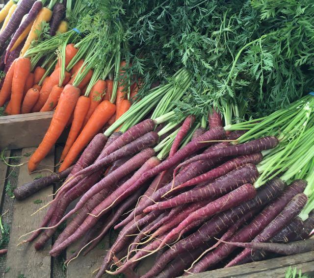 Carrots    Photo ©Evie Saffron Strands