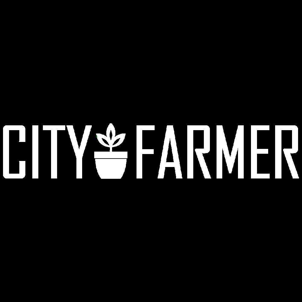 logos_city.png