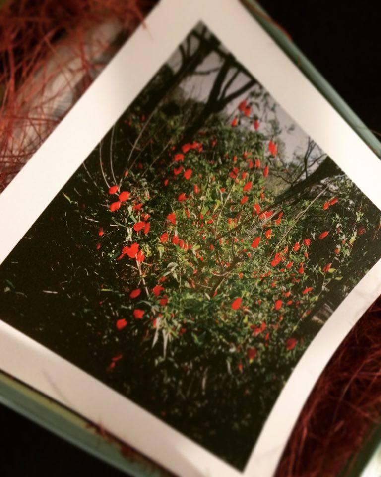 JC CREATIVE 女性攝影師    台北推薦婚攝 女力婚攝     自然風格 溫度故事 花蓮婚宴 補請 桃園婚攝      圖像00002.JPG