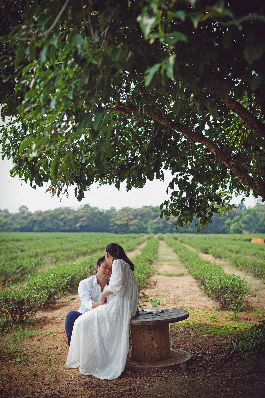 [JC]CREATIVE 女性攝影師 台灣人像 人像攝影  親子家庭  自然風格 台北 孕婦寫真 桃園渴望園 時尚孕婦  圖像00045.JPG