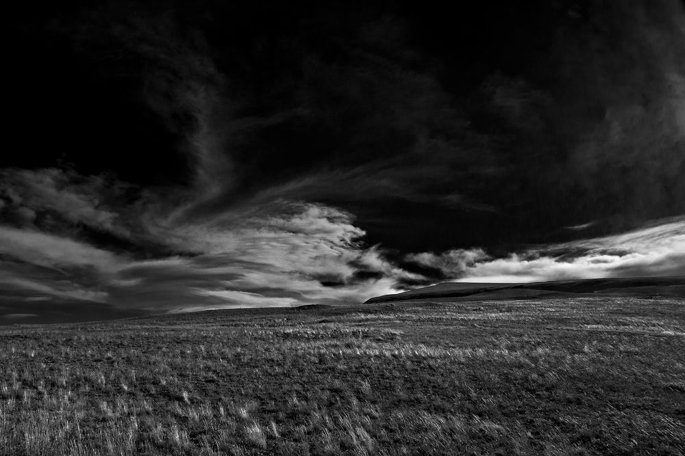 Landscapes_DSC04303-bw.jpg