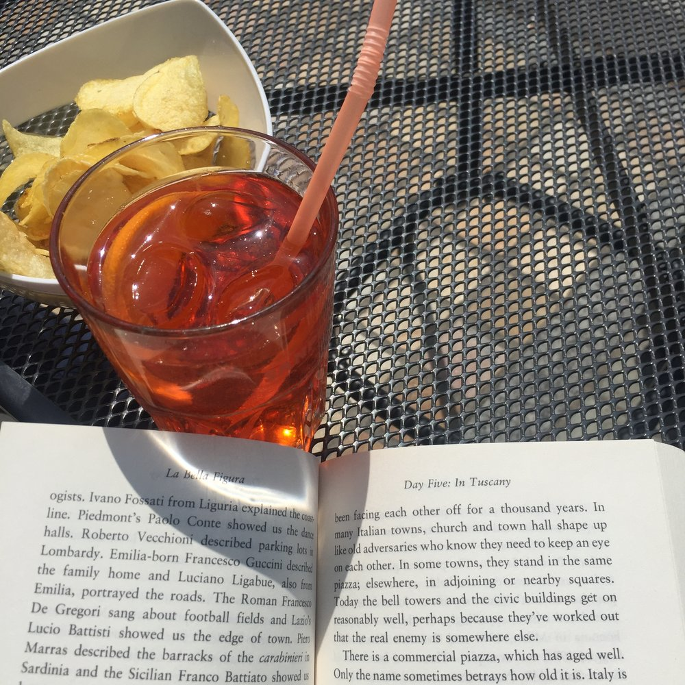 Spritz og bog i solen