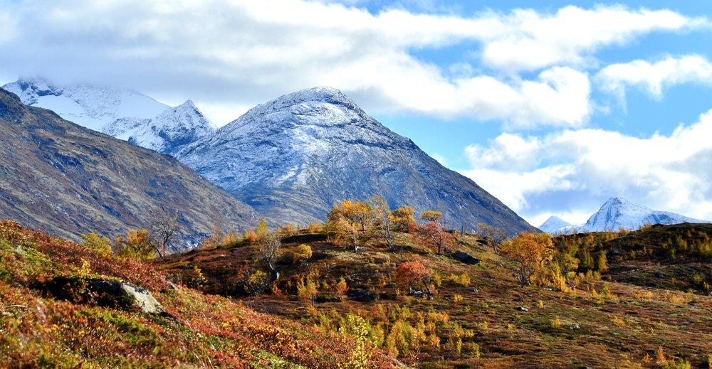 Turen til Sauhøe er ingen lang tur, men utsikta ein får er svært så vakker.