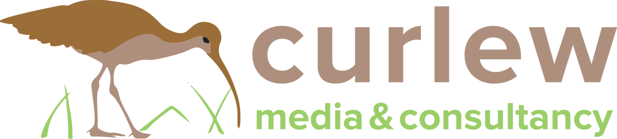 Curlew Media & Consultancy
