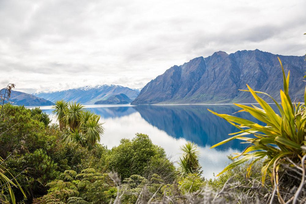 New Zealand-191.jpg