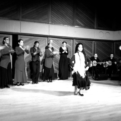 Flamenco at Nassau Theatre