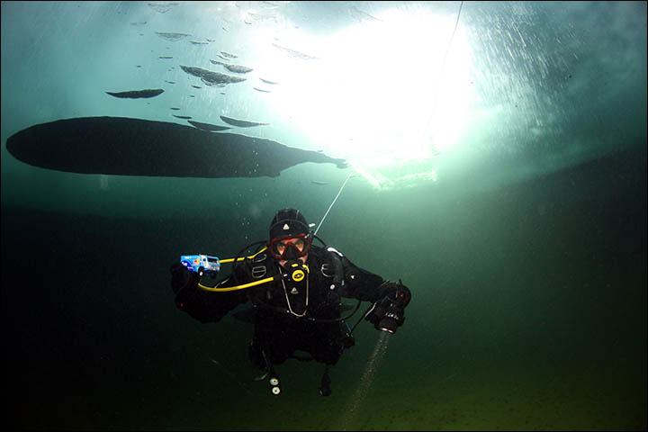 inside front page large with a diver.jpg