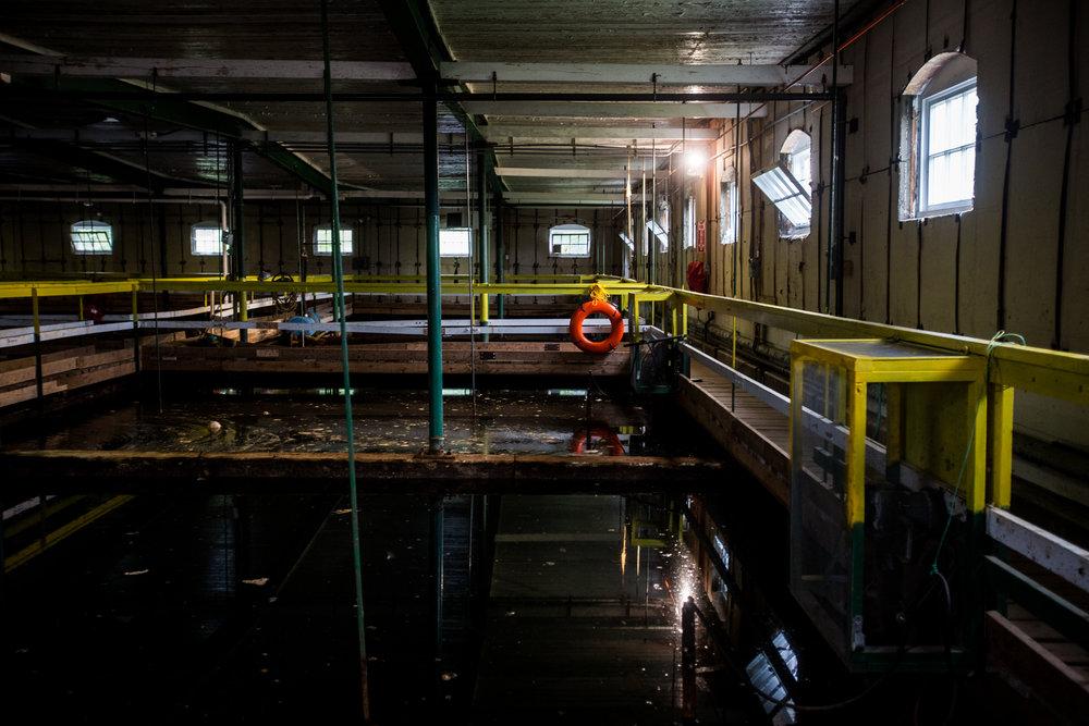 Maine Water0134.jpg