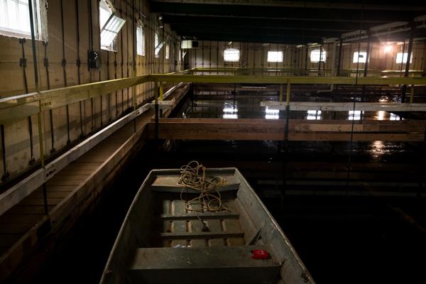Maine Water0216.jpg