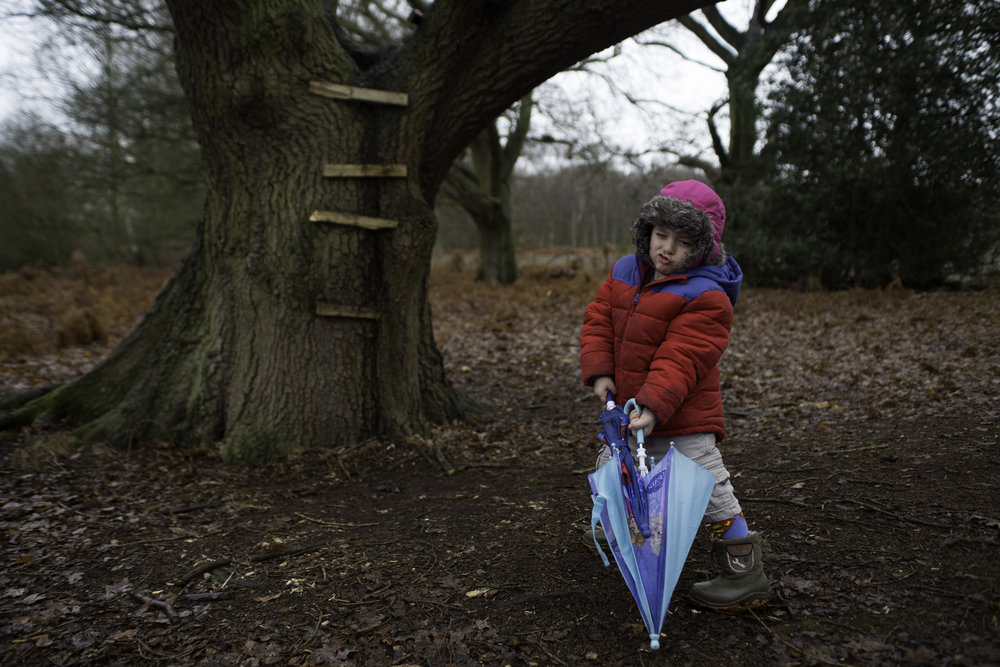 My littlest on our New Years Day walk this year......