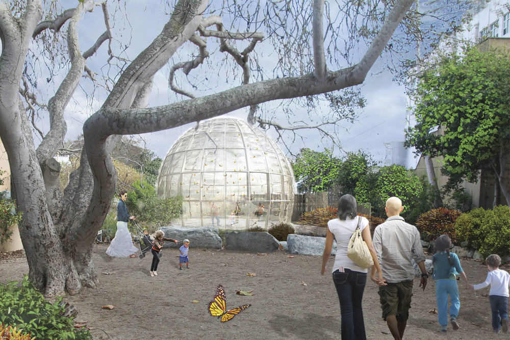 In Progress_Butterfly Pavilion 11.jpg