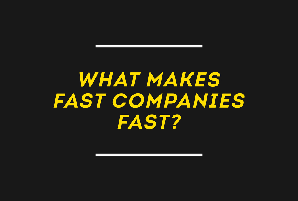 DOWNLOAD WHAT MAKES FAST COMPANIES FAST
