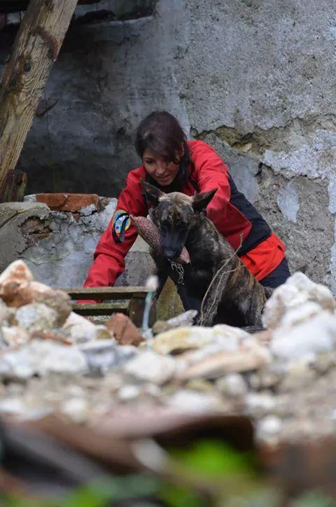 Nasca und ich in Aktion bei der Rettungshundestaffel