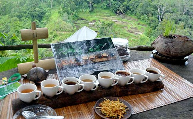 Bali-Coffee-and-Spices-Plantation.jpg