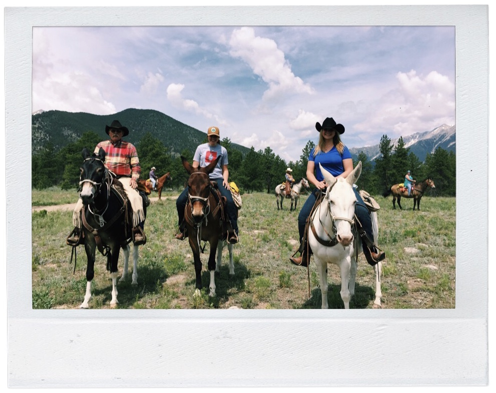 OG mule gang, Summer 2015. Harold, pictured left, passed away the following year. I consider myself lucky to have had the chance to ride with him beforehand. This photo will always be special to me because of that.