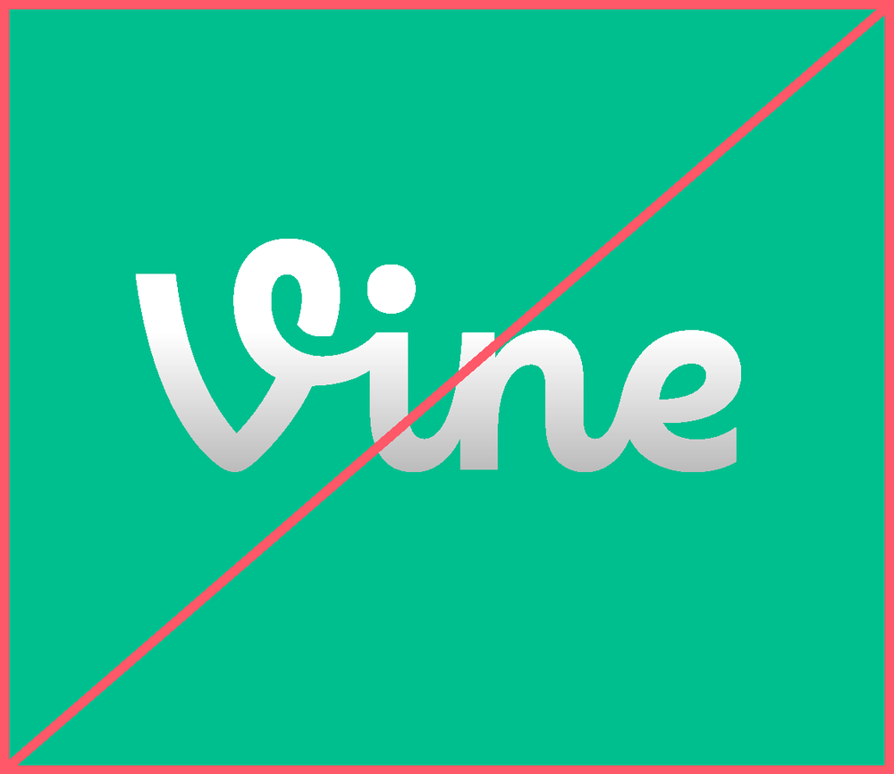 Never add visual effects or gradient to the wordmark or V mark