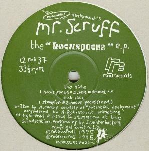 Mr scruff.jpg