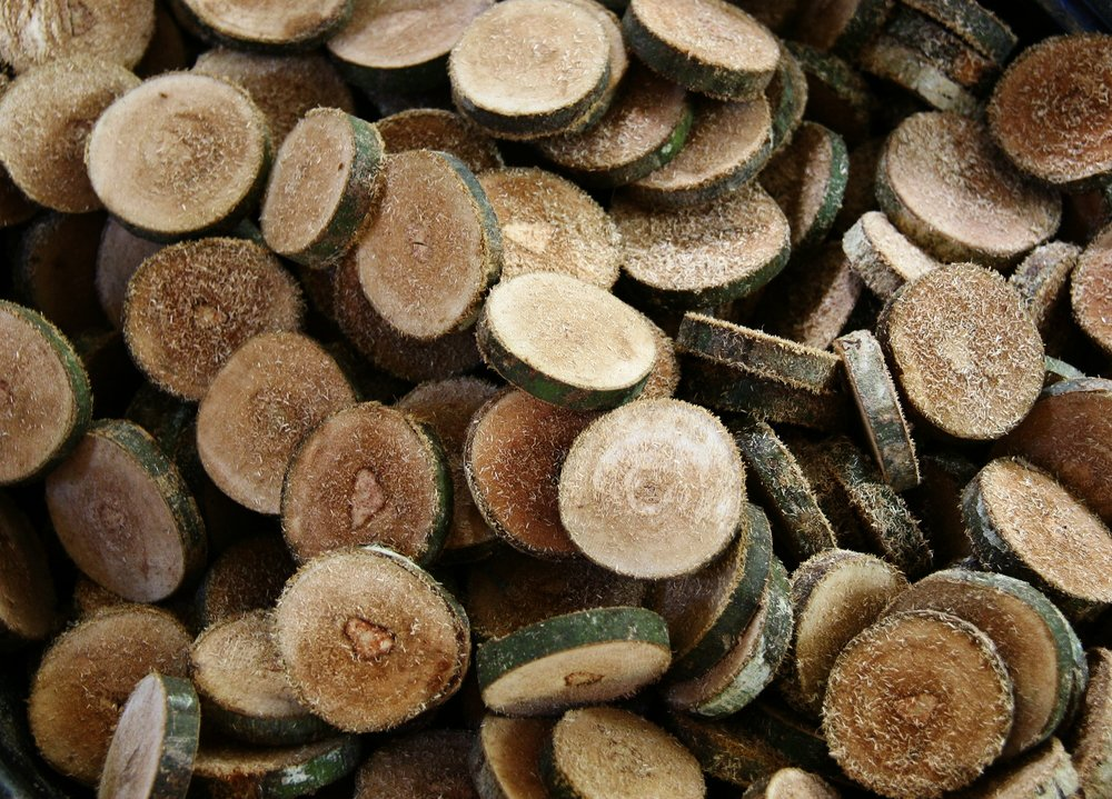 Wood discs are freshly cut from branches of the Philippine Coral Tree, a sustainable resource.