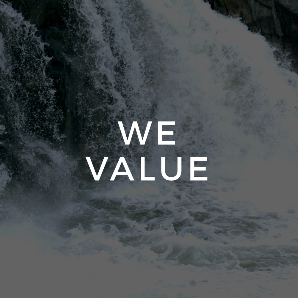 "<p><strong>WE VALUE</strong><a href=""/impact"">"