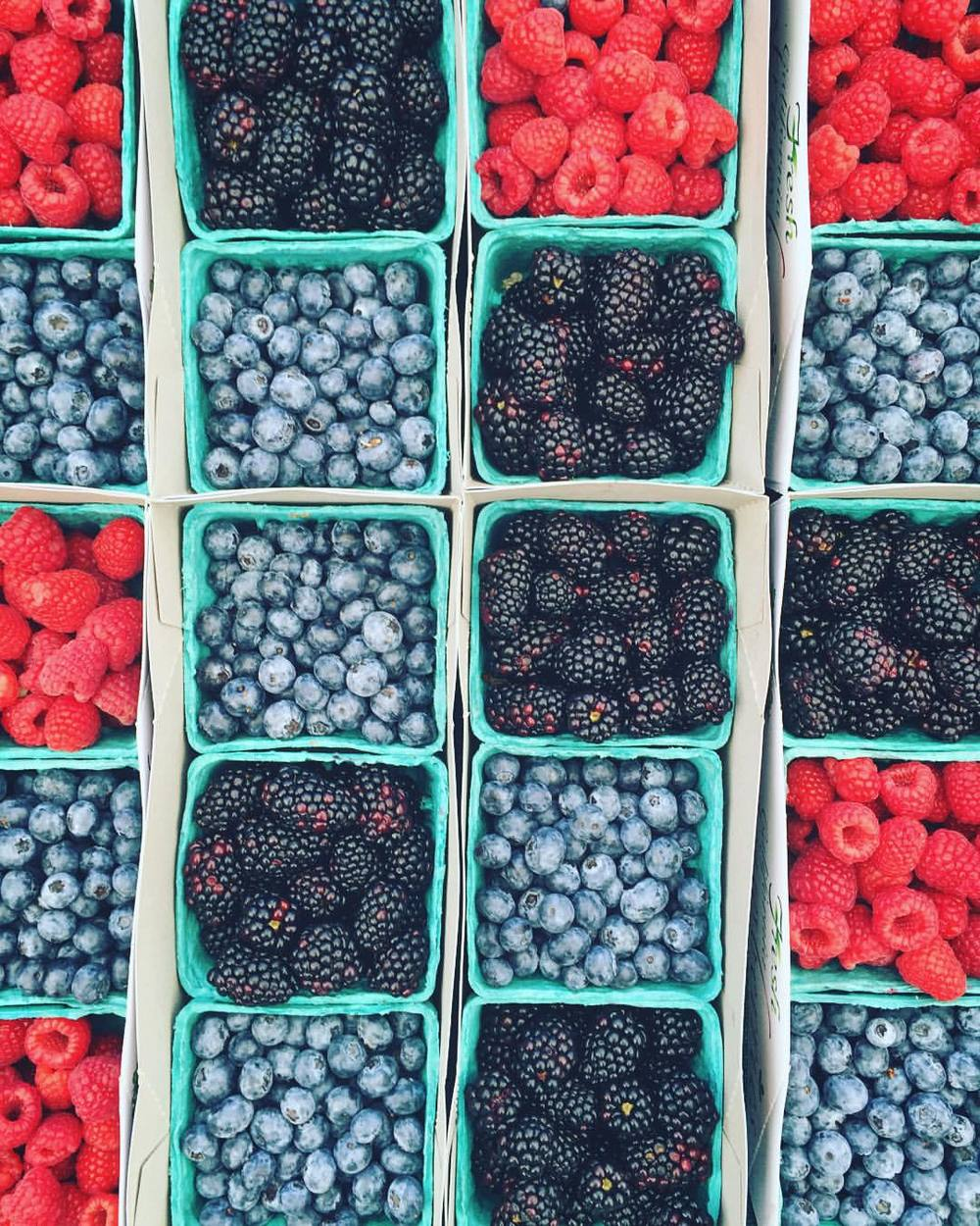 Wilshire Farmer's Market | Los Angeles, California